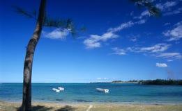 Playa del d'eau de los sujetadores en la isla de Isla Mauricio Foto de archivo