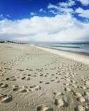 Playa del delfín imagen de archivo