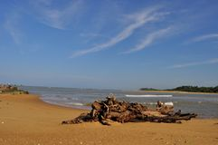 Playa del estuario de la costa costa con el cielo en Sri Lanka Imágenes de archivo libres de regalías