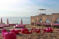 Playa del flamenco Imágenes de archivo libres de regalías