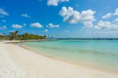 Playa del flamenco en la isla de Aruba Fotografía de archivo libre de regalías