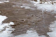 Playa del hielo Fotografía de archivo libre de regalías