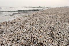 Playa del invierno de cáscaras en el Mar Negro Imagen de archivo libre de regalías