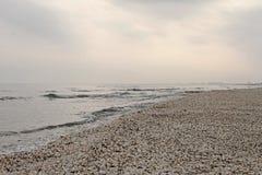 Playa del invierno de cáscaras en el Mar Negro Imagenes de archivo