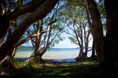Playa del lago - lago smiths foto de archivo
