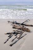 Playa del mar Báltico imagenes de archivo