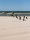 Playa del mar Báltico con las rocas y la madera vieja Fotos de archivo libres de regalías