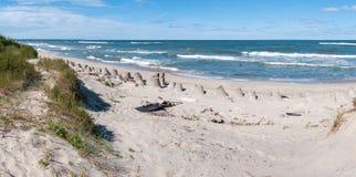 Playa del mar Báltico Foto de archivo libre de regalías