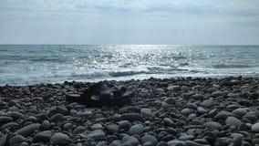 Playa del mar con el paso-ins negro almacen de metraje de vídeo