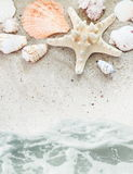 Playa del mar con la frontera de los shelles Foto de archivo