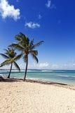 Playa del mar del Caribe en la isla de Guadalupe Imágenes de archivo libres de regalías