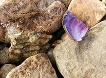 Playa del mar del verano Fotos de archivo libres de regalías