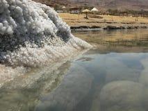 Playa del mar muerto Imágenes de archivo libres de regalías