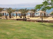 Playa del mar muerto Fotos de archivo libres de regalías