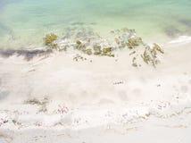 Playa del ojo del ` s del pájaro en Maine Foto de archivo libre de regalías