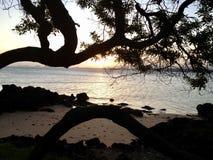 Playa del paisaje en Anchieta, el Brasil fotografía de archivo libre de regalías