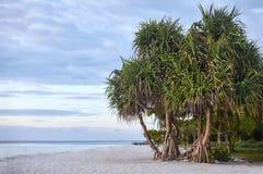 Playa del paraíso en la isla tropical Imagen de archivo