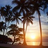 Playa del paraíso en la puesta del sol Imagenes de archivo