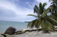 Playa del parque nacional de Cahuita, Costa Rica, mar del Caribe foto de archivo libre de regalías