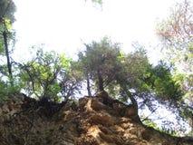Playa del pino Fotos de archivo libres de regalías