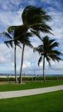 Playa del pompano en la Florida Imagen de archivo