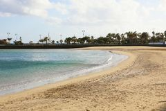 Playa del Reducto beach with palm trees on the background, Arrecife, Lanzarote.  Royalty Free Stock Photography