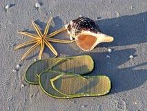 Playa del seashell de las sandalias de las estrellas de mar Fotografía de archivo