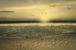 Playa del sur de la Florida Fotos de archivo libres de regalías