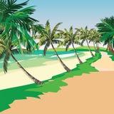 Playa del verano con las palmeras tropicales ilustración del vector