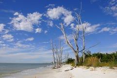 Playa dominante de los amantes Imagen de archivo libre de regalías