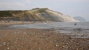 Playa Dorset Inglaterra Reino Unido de Charmouth metrajes