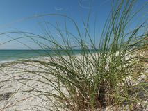 Playa en blanco dramática de la arena en Nueva Zelanda Fotos de archivo libres de regalías