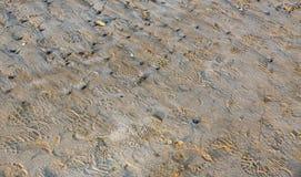 Playa en Bretaña foto de archivo libre de regalías