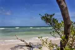 Playa en Clearwater, la Florida fotos de archivo