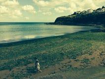 Playa en Cornualles Fotografía de archivo