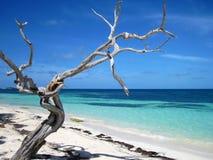 Playa en el Caribe Fotos de archivo