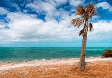 Playa en el fuerte Zachary Taylor Historic State Park en Key West, la Florida fotos de archivo libres de regalías