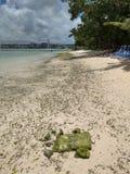 Playa en el guan imagen de archivo