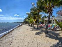 Playa en el mar del Caribe de Placencia, Belice imágenes de archivo libres de regalías