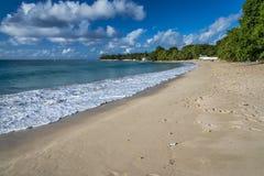 Playa en la bahía Barbados de las cañas Foto de archivo
