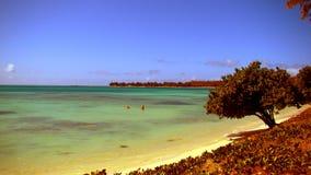 Playa en la isla de Mauricio Fotografía de archivo