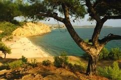 Playa en la isla de Thassos, Grecia Fotografía de archivo libre de regalías