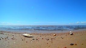 Playa en la orilla del golfo de Finlandia metrajes