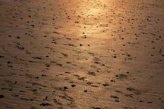 Playa en la puesta del sol imagenes de archivo
