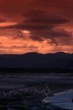 Playa en puesta del sol Imagen de archivo libre de regalías