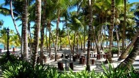 Playa en Punta Cana Imagenes de archivo