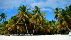 Playa en Punta Cana Fotos de archivo libres de regalías