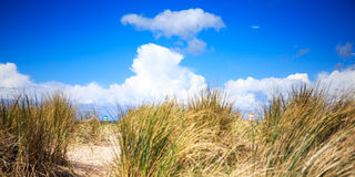 Playa en Scheveningen, Países Bajos Imágenes de archivo libres de regalías