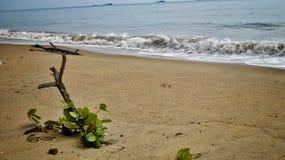 Playa en Tailandia Fotos de archivo libres de regalías