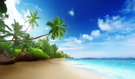 Playa en tiempo de la puesta del sol en la isla de Mahe Foto de archivo libre de regalías